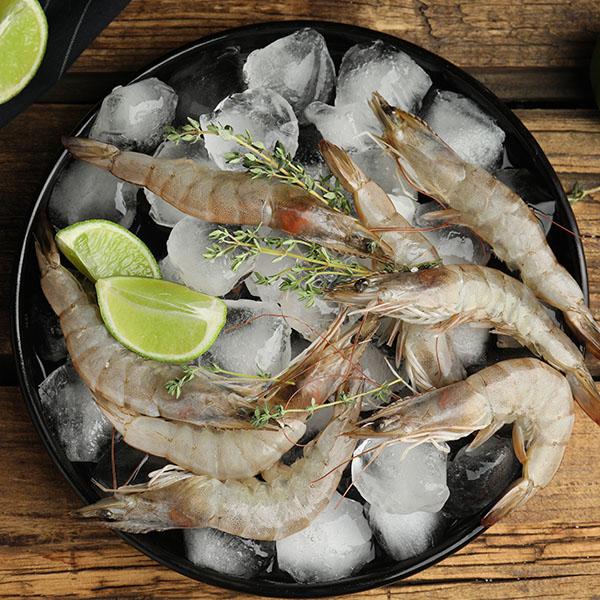 Fresh shrimps  / Vannamei