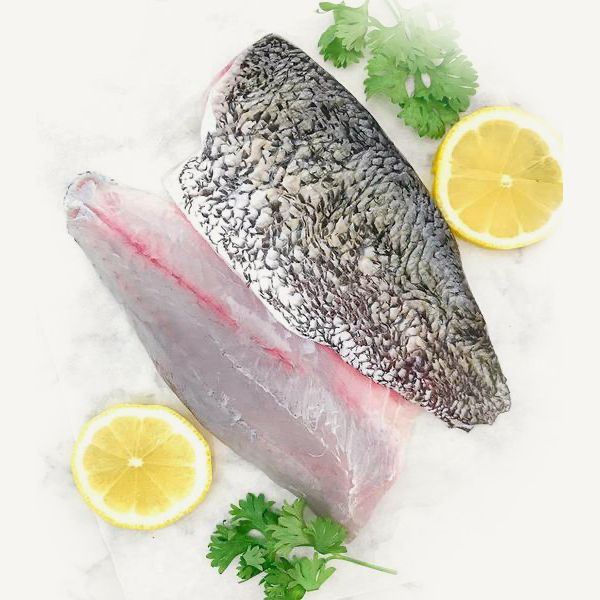 Barramundi Frozen