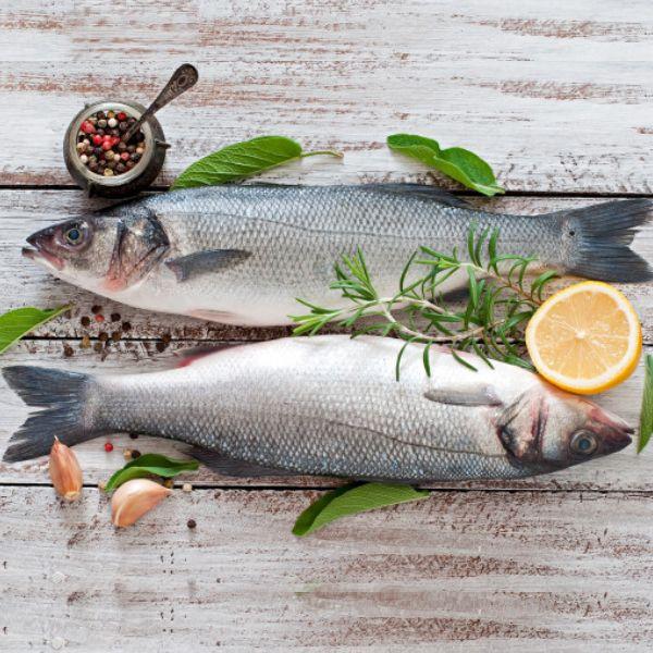 Fresh Sea Bass / باس البحر الطازج