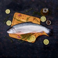 Norway Salmon Frozen