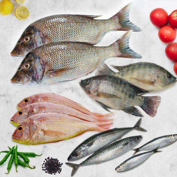 Value Fish Box