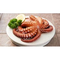 Octopus Whole Cleaned Frozen
